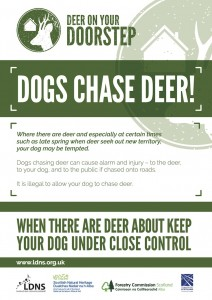 7095 Deer On Your Doorstep Dogs Poster 160915 v3